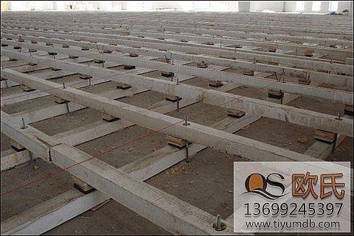 体育运动地板与实木地板的差别