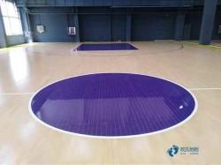 寻求篮球木地板哪种牌子好